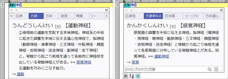 20210208194940-nishishi.png